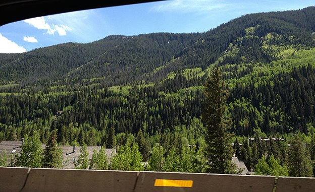 June 12, More Green Stuff in Colorado